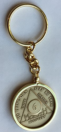 Wendells 6 Month AA Sobriety Chip In Removable Gold Plated Keychain Holder