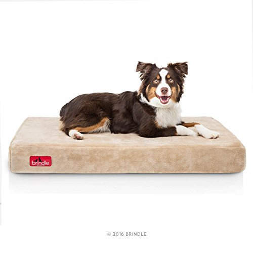 Brindle Soft Velour Pet Bed - Khaki - 34in x 22in
