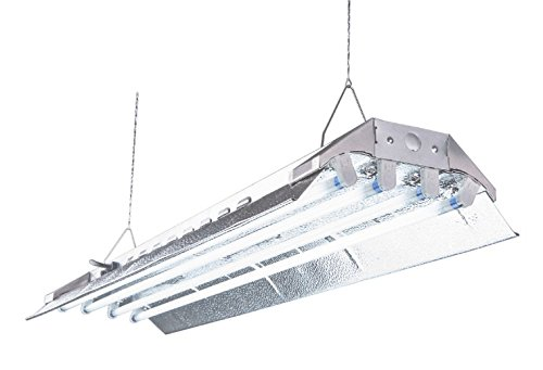 DuroLux DL844 T5 Fluorescent 4Ft 4 Lamps with 6500K and 20000 Lumen Grow Lights