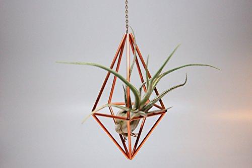 Design 19 - Hanging Copper Diamond Geometric Ornament (Himmeli) - Air Plant, Terrarium