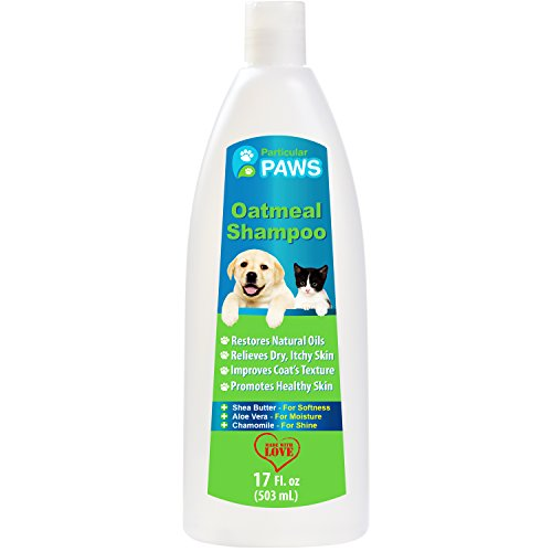 Particular Paws Oatmeal Shampoo for Dogs and Cats with Shea Butter, Aloe Vera, Chamomile (17 oz)