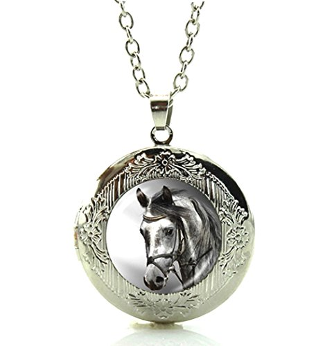 Mom Horse - DianaL Boutique Silvertone Horse Locket Pendant Necklace Glass Cabochon Art Picture Fashion Jewelry