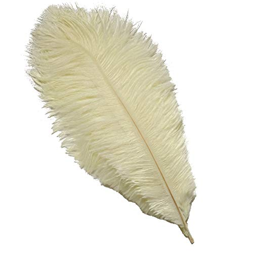 Sowder 10pcs Ostrich Feathers 12-14inch(30-35cm) for Home Wedding Decoration(ivory)
