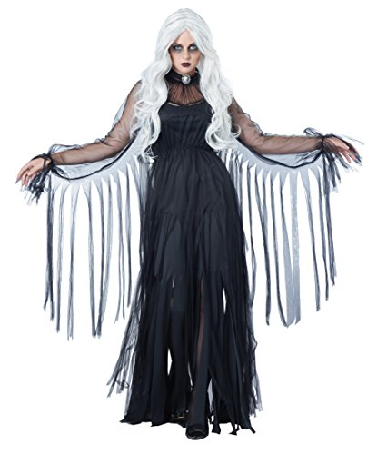 California Costumes Women's Vengeful Spirit, Black, Small (Scary Woman Halloween Costume)