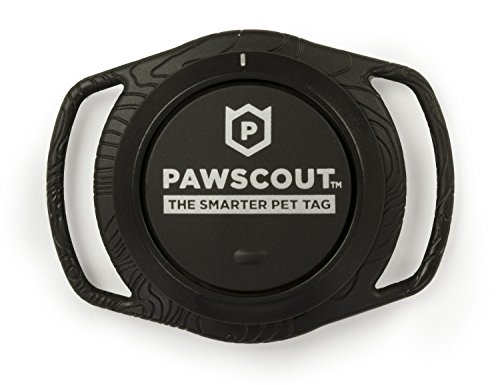 41YUUss6RFL - Pawscout Smarter Pet Tag: Cat Version