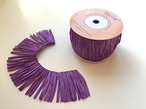 Decorative Yafit Raffia Trimming 2.36Inch Width ✖️3.5yards per spool ,Purple (Trim Raffia)