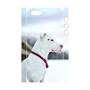 3D Bumper Plastic Customized Case Of Pit Bull Terrier Case For Ipod Touch 4 Cover,5S