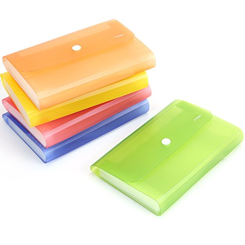 Ya Jin Translucent 13 Pockets Expandable File Folder Pouch Bills Document Holder Organizer with Tabs And Snapper, Green