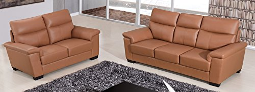 American Eagle Furniture 2 Piece Clark Series Top Grain Leather Upholstered Living Room Sofa Set ...