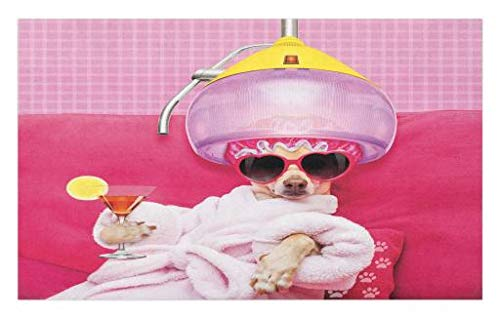 Lunarable Funny Doormat, Chihuahua Dog Relaxing and Lying in Wellness Spa Fashion Puppy Comic Print, Decorative Polyester Floor Mat with Non-Skid Backing, 30 W X 18 L inches, Magenta Baby Pink