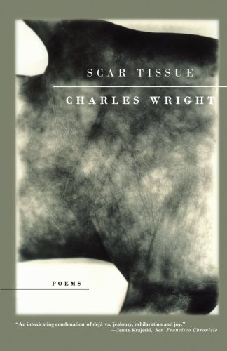 scar tissue book review Scar tissue is a story of dedication and debauchery, of intrigue and integrity, of recklessness and redemption--a story that could only have come out of the world of rock buy the ebook your price.