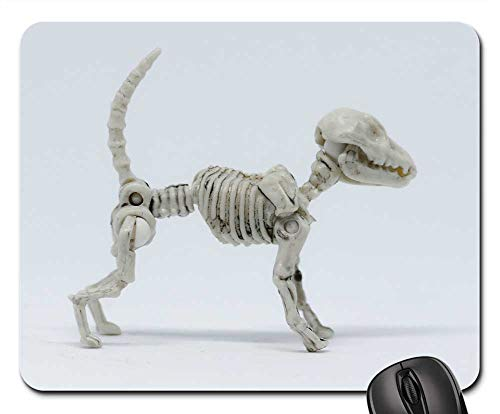 Mouse Pads - Animal Nature Wildlife Little Dog Skeleton