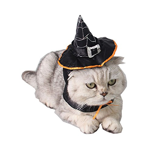 Schnappy Halloween Cat Witch Hat Pet Wizard Headwear for Cats & Small Dogs Party Costume Free Size (Witch Hat) -