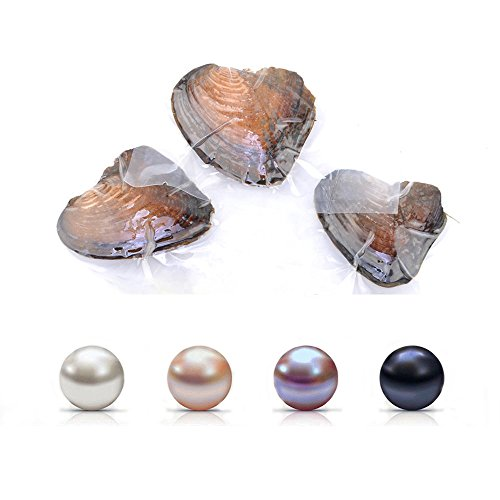 Pearl Oyster Freshwater Cultured Oval Pearls for Jewelry Making with White/Pink/Purple/Black, Birthday Gifts Handmake DIY Jewelry Making (6.5-7.5mm 4PC) ()