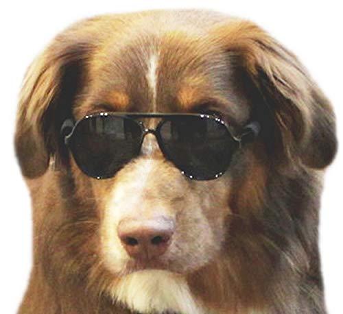 Amazon.com: Gafas de sol G010 para perros y mascotas, con ...