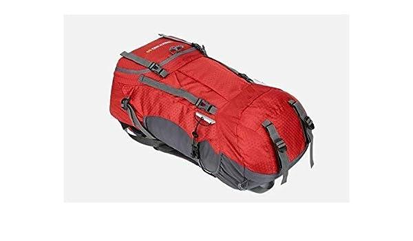 1e9ec56c8552 Amazon.com : Goodscene Sports Daypack Bag Outdoor and Indoor Large ...
