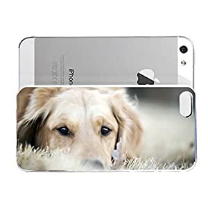 iPhone 5&5S cover case Animals Dog Retriever