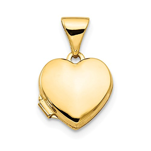 ICE CARATS 14kt Yellow Gold Plain Heart Photo Pendant Charm Locket Chain Necklace That Holds Pictures Fine Jewelry Ideal Gifts For Women Gift Set From Heart -