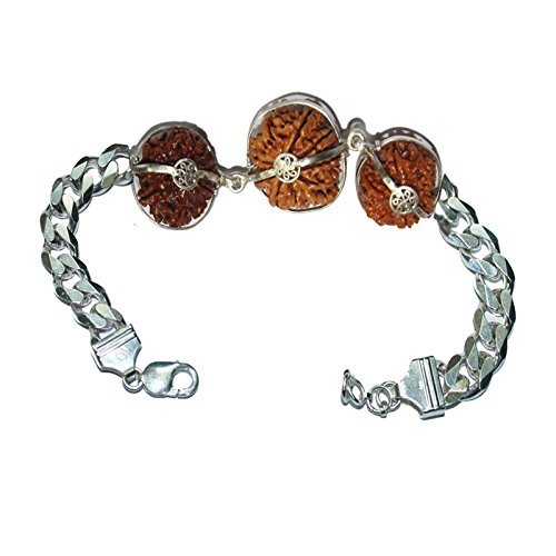rudraksha-combination-for-career-3712-mukhi-java-certified-bracelet