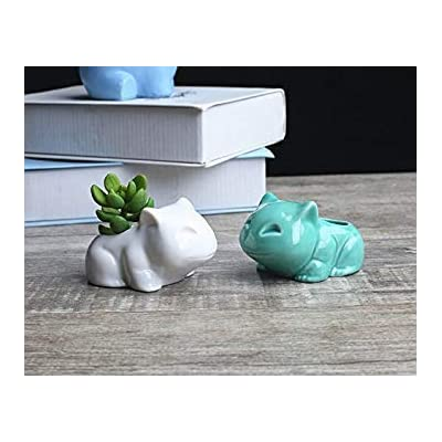 Gift Prod 2 Pcs Whtie Pokemon Bulbasaur Flowerpot Modern Cute Home Decorative Ceramic Art Pots Mini Flower Plant Containers Plant Window Boxes (Style 18) : Garden & Outdoor