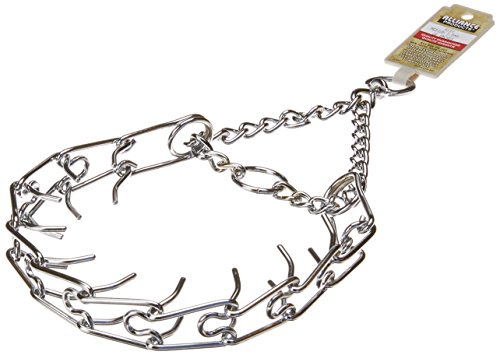 Coastal Pet 05590 B G3018 Training Dog Collar, 18-Inch