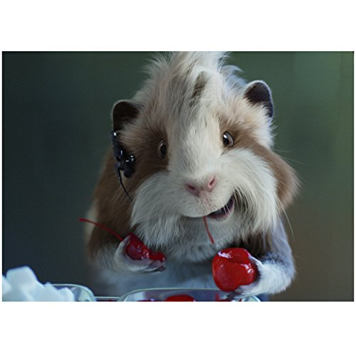 G-Force Hurley Holding Small Cherries 8 x 10 inch photo