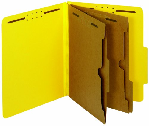 GLOBE-WEIS Pendaflex Colored Classification Folders, 2/5 ...