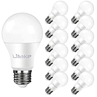 Litake A19 LED Bulbs 5000K, Daylight 100 Watt Equivalent LED Light Bulbs, 1100LM, 100-240V, 11W E26 Base LED Household Light Bulbs - 12 Pack