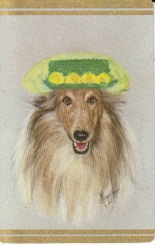 A Vintage Single Swap Playing Card Collie Dog Wearing Hat