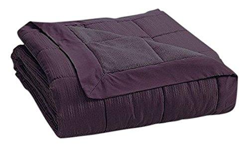JBFF 250 Thread Count Microfiber Reverse to Fleece Goose Down Alternative Blanket, Full/Queen, Plum (Fleece Blanket Plum)