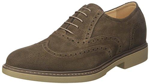 230 Uomo Nero Sneaker Marrone Colorado Giardini UOAqEA