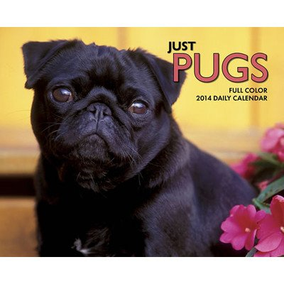 UPC 709786026593, Just Pugs 2014 Box Calendar