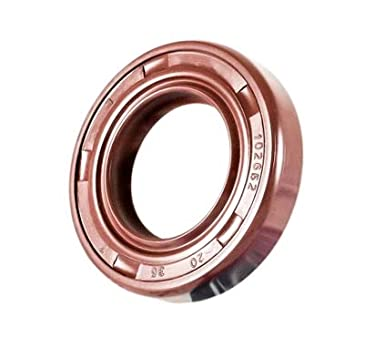 2 PCS Single Metal Case w//Viton Rubber Coating Oil Seal 22X36X10 Viton Oil Seal Grease Seal TC | EAI Double Lip w//Garter Spring 22mmX36mmX10mm