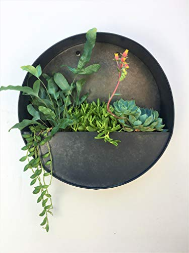 (Round Hanging Wall Vase Planter for Succulents or Herbs - Beautiful Wall Decor for Air Plants, Faux Plants, Cacti and More, Dark Zinc Color - in Gift)