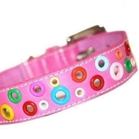 Puppy Loki Leather (The Cool Puppy Loki Puppy Leather Dog Collar - Punk Pink Medium (10-12 inches))
