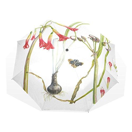 Amaryllis Water (BYouLockX Watercolor Amaryllis Rain Umbrella for Windproof & UV)