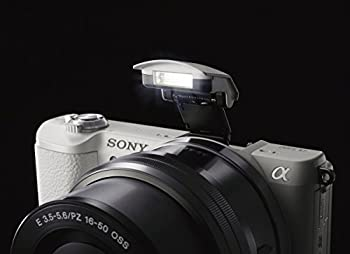 Sony A5100 16-50mm Mirrorless Digital Camera With 3-inch Flip Up Lcd (White) 9