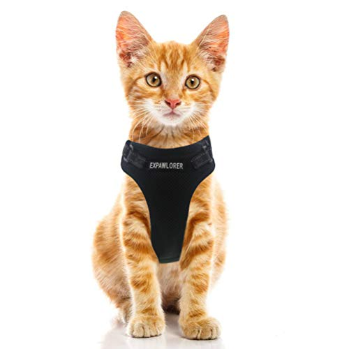 EXPAWLORER Escape Proof Cat Harness Adjustable Comfortable Mesh Vest with Reflective Strap for Cats and Small Dogs Black