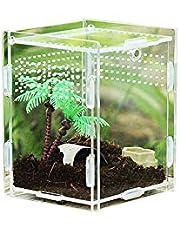 Rainai Rettile Box per Allevamento Scatola per Alimenti in Acrilico Terrario da Arrampicata per Animali Domestici Trasparente a 360 Gradi