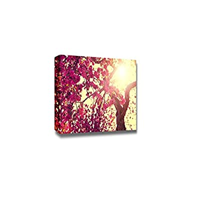 Canvas Prints Wall Art - Spring Nature Scenery/Landscape Blooming Tree Over Sunny Sky | Modern Wall Decor/Home Art Stretched Gallery Canvas Wrap Giclee Print & Ready to Hang - 24