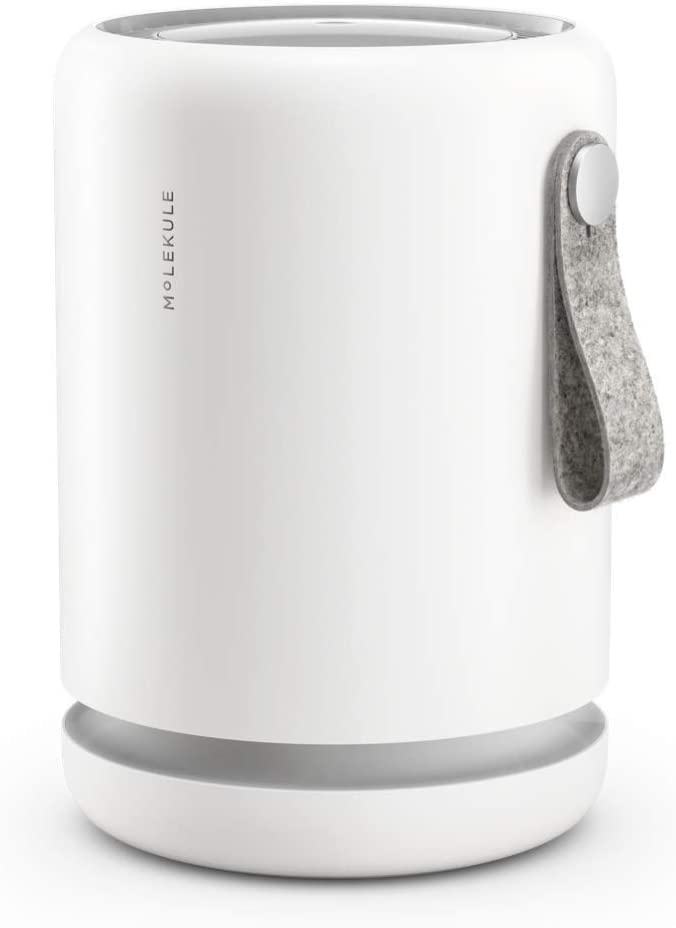 Molekule Air Mini Small Room Air Purifier