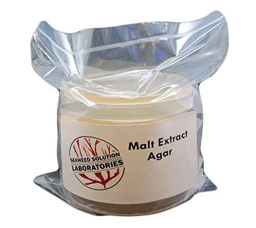 Malt Extract Agar (MEA) 5, 100 Millimeter Plates