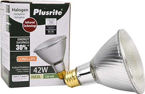 42 Watt Fluorescent Flood Light in US - 7