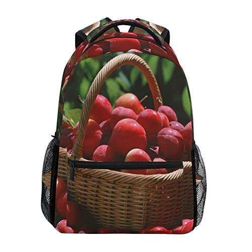 Red Plums And Basket School Backpack Large Capacity Canvas Rucksack Satchel Casual Travel Daypack for Children Adult Teen Women Men