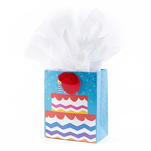 Hallmark Small Gift Bag with Tissue Paper for Birthdays, Celebrations and More (Graphic Cake)