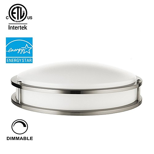 Stainless Steel Led Ceiling Lights - 1