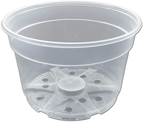 8 Crystal Clear Orchid Pots by rePotme – 6 Pack