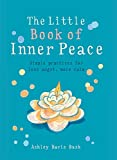Little Book of Inner Peace: Simple practices for less angst, more calm (MBS Little book of...)
