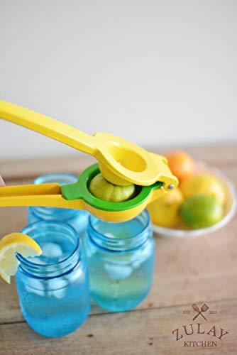 Citrus juice press