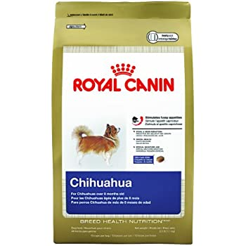 royal canin breed health nutrition chihuahua adult dry dog food 10 pound pet. Black Bedroom Furniture Sets. Home Design Ideas